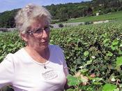 Françoise Bedel, Origin'elle, Extra-Brut