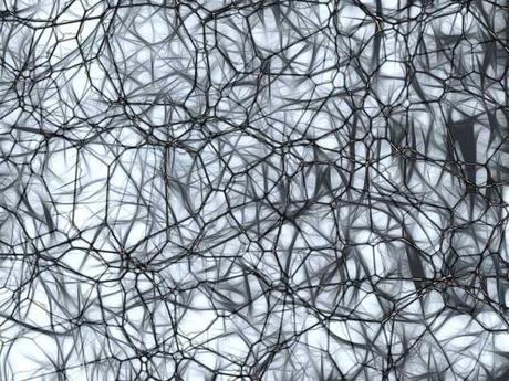 Desconexión cerebral relacionada con la interferencia emocional en personas con esquizofrenia