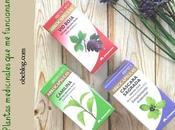 FITOTERAPIA Plantas medicinales funcionan