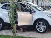 Alquiler coche Croacia Eslovenia