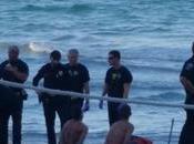 Policía dispara taser emigrante cubano llegó florida