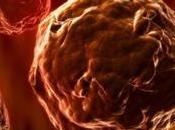 Eliminan Celulas AutoInmunes Dañadas afectar Sanas