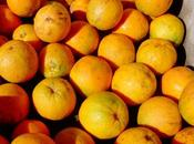 cosechador naranjas