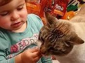 niña sabía identificar orificios gato