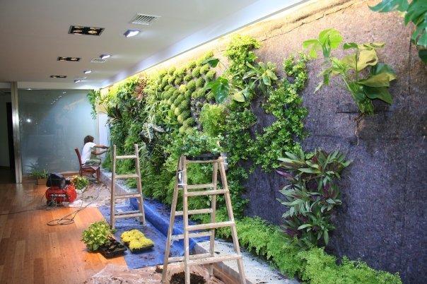 Beneficios de los muros y techos vegetales paperblog for Muros verdes beneficios