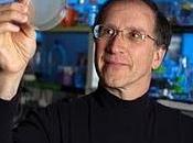 Diseñan proteínas artificiales existentes naturaleza