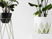 Opciones diez para decorar con plantas colgadas paperblog - Pedestal para plantas ...