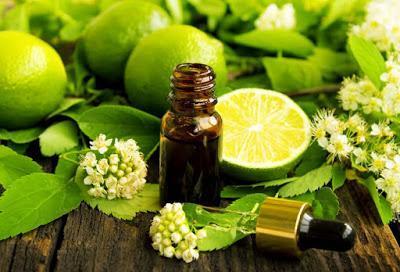 Salud & Belleza; ¡Las 8 mejores mascarillas naturales para tu cabello!