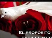 propósito Dios para matrimonio