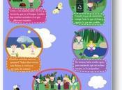 Holly: consejos para cuidar naturaleza verano