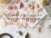 Aprende cristalizar flores manera sencilla #DIY #técnicasdecocina