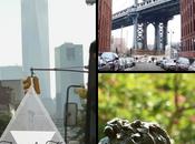 Cosas Nueva York