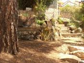 Estos peldaños madera piedra terminan momento reforma jardín secreto