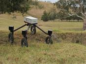 SwagBot: primer robot autónomo control ganado