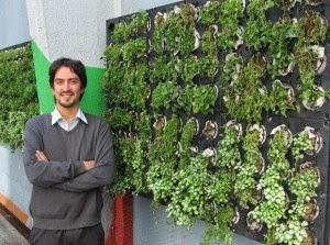 Como hacer un jardin vertical paperblog for Como construir un jardin vertical