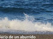 Cosas hacer verano costa Málaga