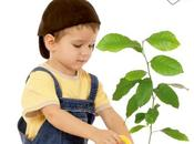 Libro Montessori Casa