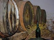 Tiempo vendimia vinos