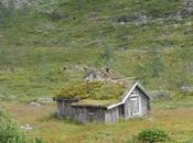 Techos verdes Noruega.