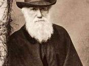 Exposición: evolución Darwin