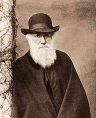 Exposición: La evolución de Darwin