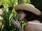 Jardín Perfumes Proyecto paisajista Kathryn Gustafson para Parque Central Valencia