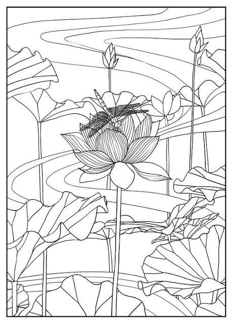 Flor de Loto , significado y 4 hojas para colorear - Paperblog