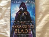 Reseña: assassin's blade Sarah Maas