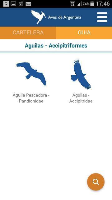 Aves de Argentina, novedosa aplicación para celulares