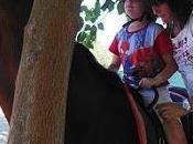 consiste terapia caballos?