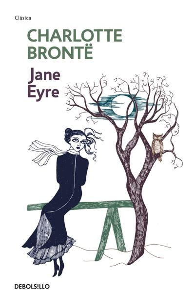 reflection on charlotte brontes jane eyre essay A reflection on jane eyre  such are the aspirations of charlotte bronte's jane eyre who grows up moving  i will outline in my essay what makes jane a female .