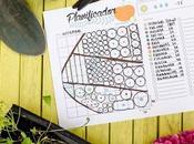 [Vídeo] Cómo diseñar huerto usando planificador.