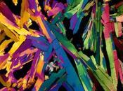 Bajo microscopio