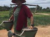 Conociendo viviendo vida rural (Hoian #vietnam16im)
