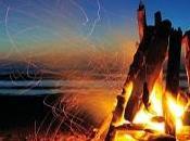 Navarro Bonfire
