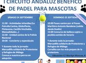 Eventos para ayudar protectoras animales Málaga Plasencia