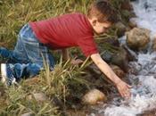 Enfermedades consumo agua potable.