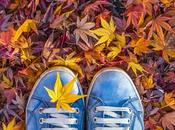 ¡Bienvenido otoño!