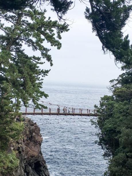 La Península de Izu: Ito, Jogasaki Coast y el Monte Omuro ...