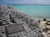 roca isla Wake