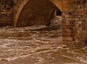 Educación Social, puente sobre aguas turbulentas