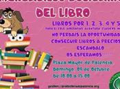 Mercadillo solidario libro Palencia