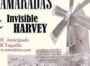 Invisible Harvey Flamaradas Fotomatón