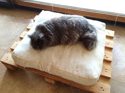 Una cama para mascotas f cil y barata paperblog for Busco una cama barata