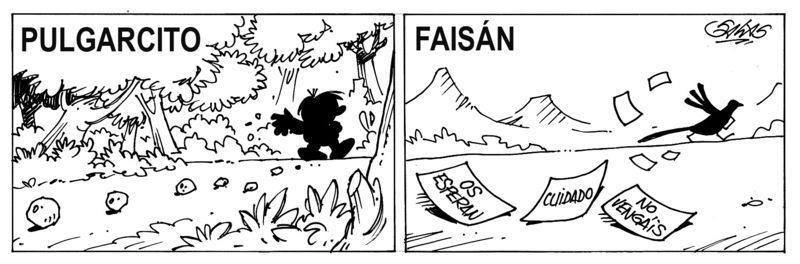 CASO FAISÁN