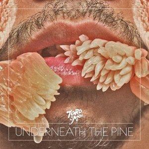Toro y Moi  – Underneath The Pine
