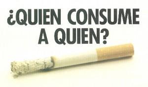 tabaco3 300x177 El tabaco puede llevar a bastantes enfermedades infecciosas