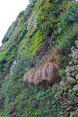 Naturcan jardines verticales for Caracteristicas de los jardines verticales
