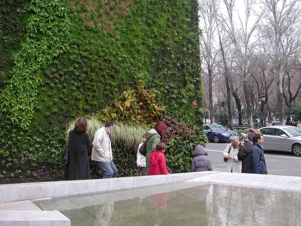 vgreen cl creadores de jardines verticales en chile