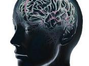 Inteligencia Evolución (segunda parte)